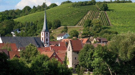 Weinberge bei Frickenhausen