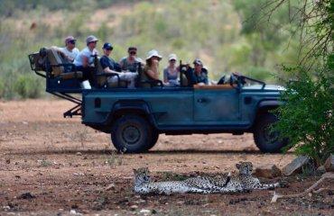 CS Safaris 2019 -02