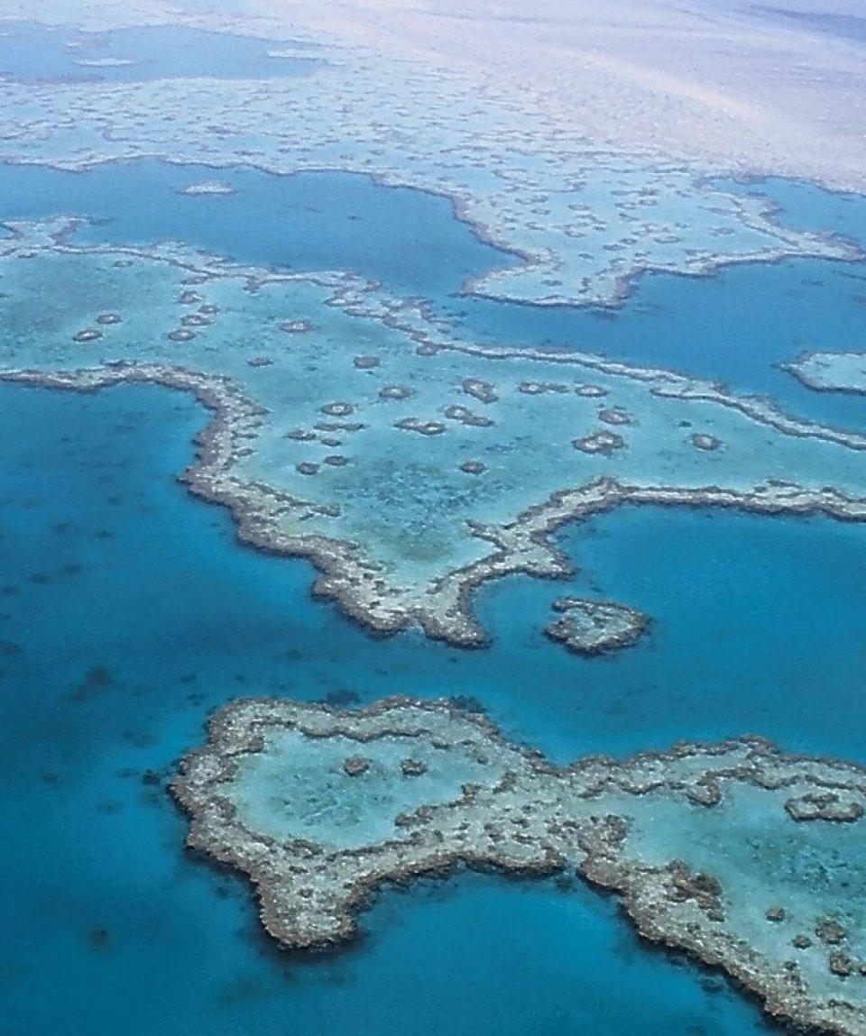 great-barrier-reef-527987_1280