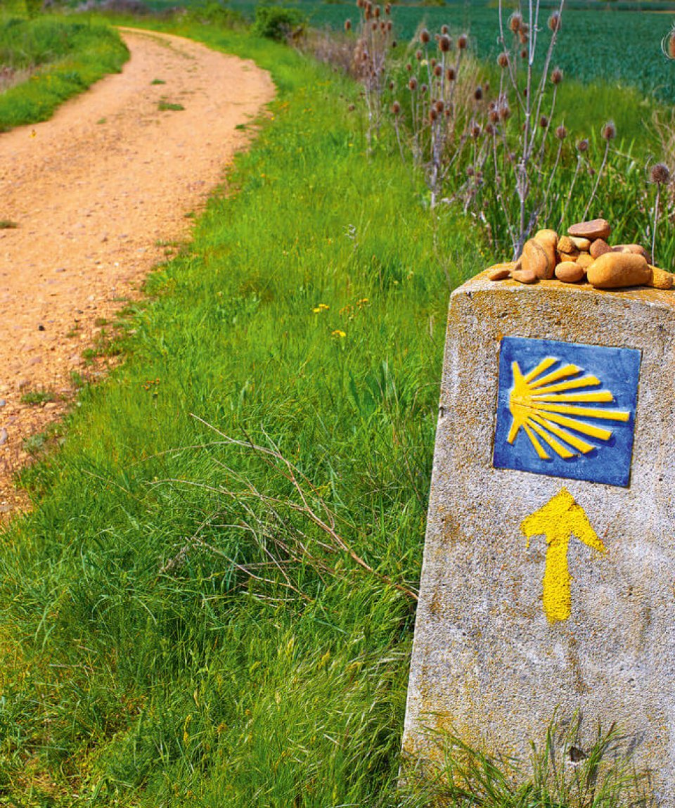 The Way of Saint James shell sign and arrow