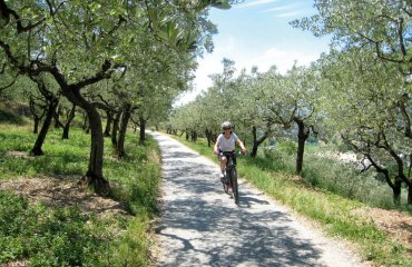 Toskana Fahrrad - ExperiencePlus Bicycle Tours