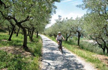 Toskana Fahrrad - ExperiencePlus Bicycle Tours