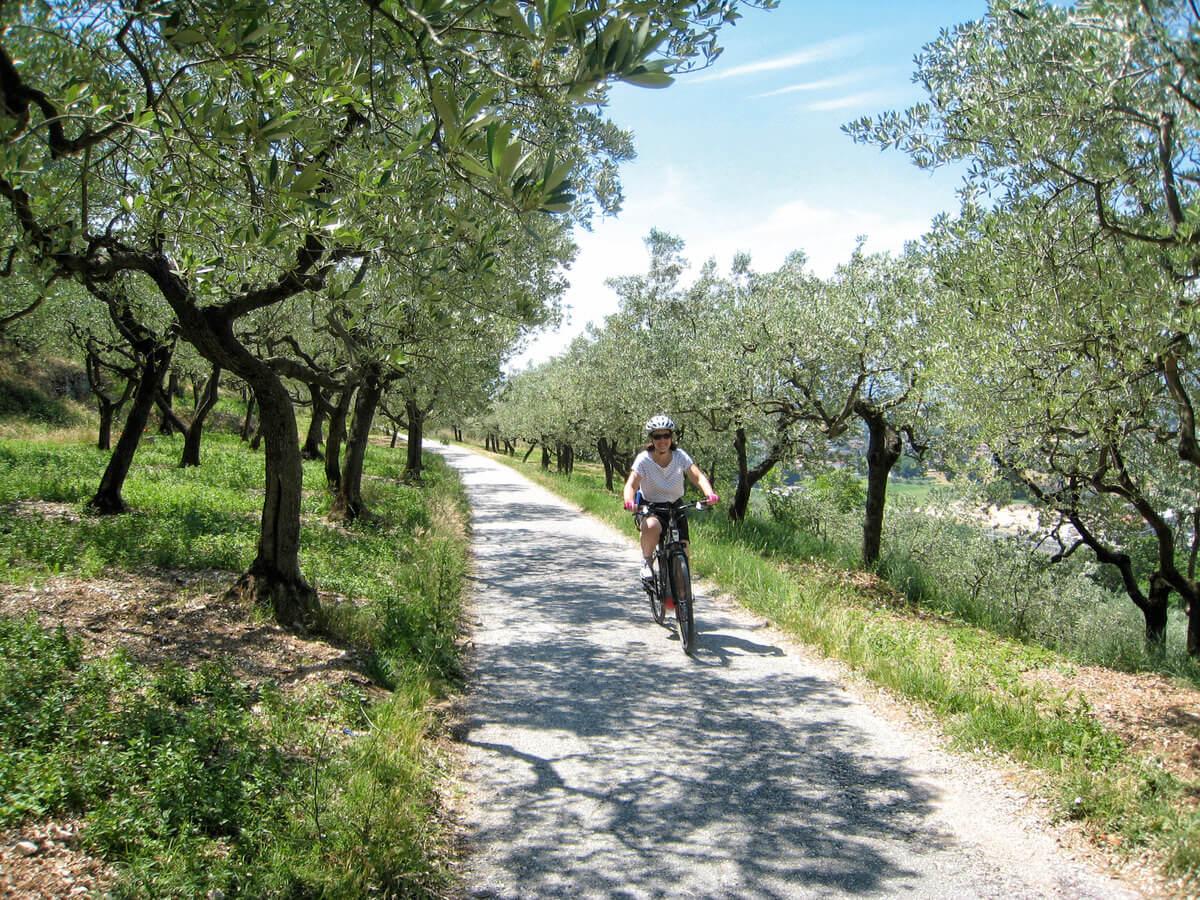 Toskana Fahrrad ExperiencePlus Bicycle Tours - E-Bike - Reise 8 Tage Toskana - Italiens Schatzkammer