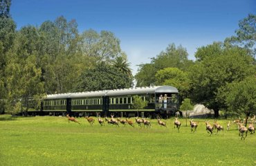 Aussichtsplattform des Rovos Rail - Rovos Rail Tours