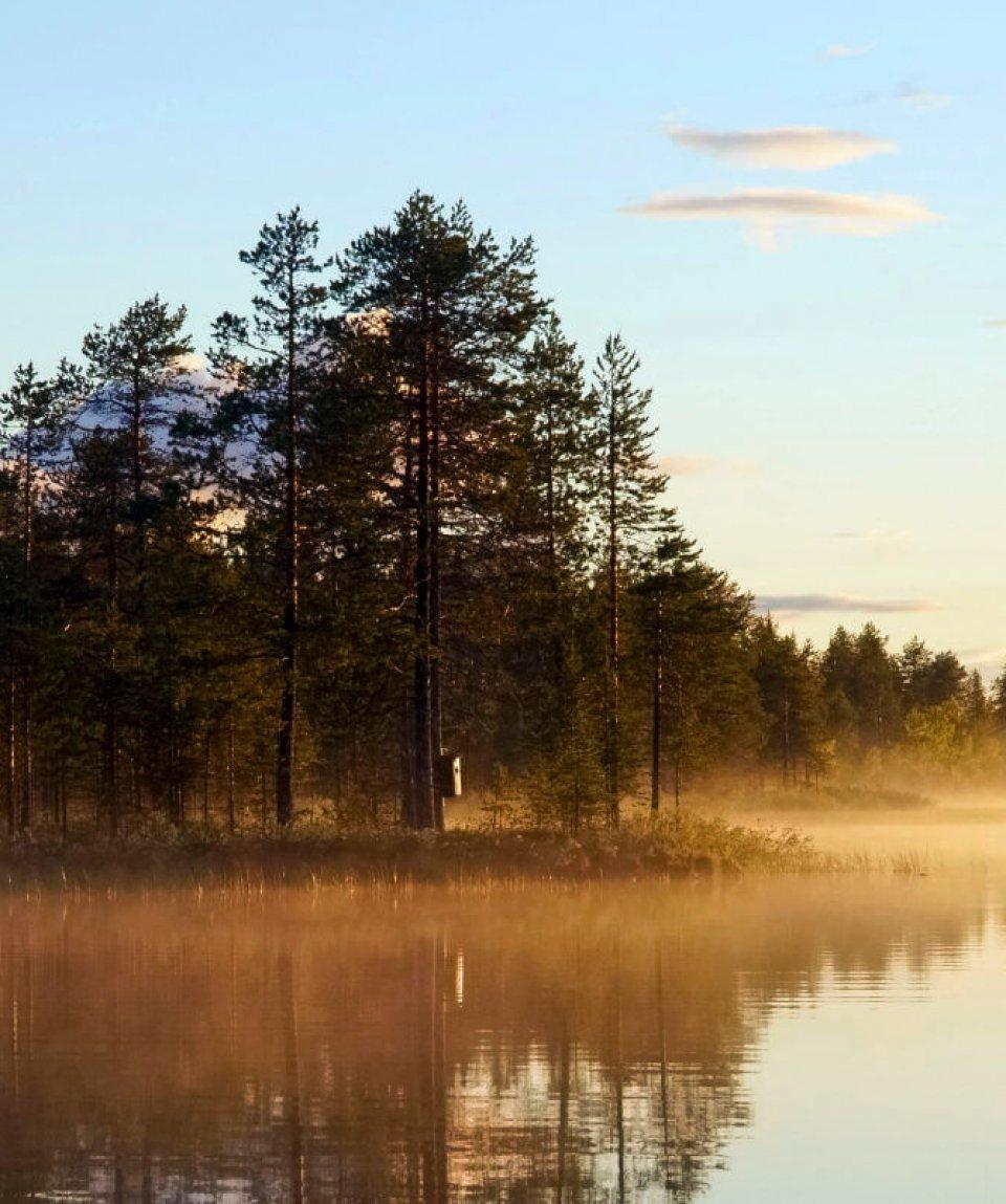 1113-RcrDV9zu-vastavalo-488004 - Visit Finnland