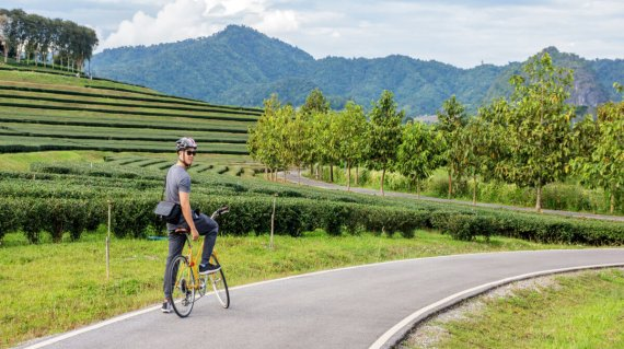 Men riding a bicycle at Singha park Chiang Rai, Thailand.