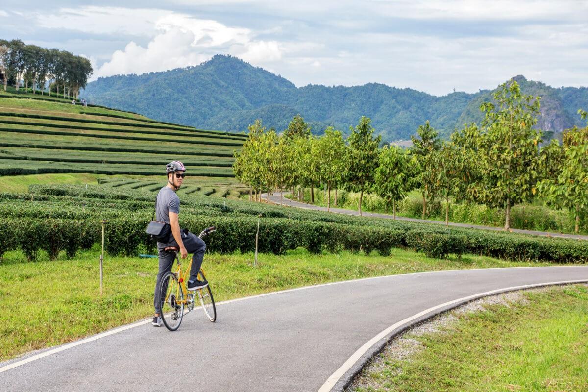 Radtour durch den Singha Park Chiang Rai supaleka Adobe Stock - Thailands unberührter Norden per E-Bike