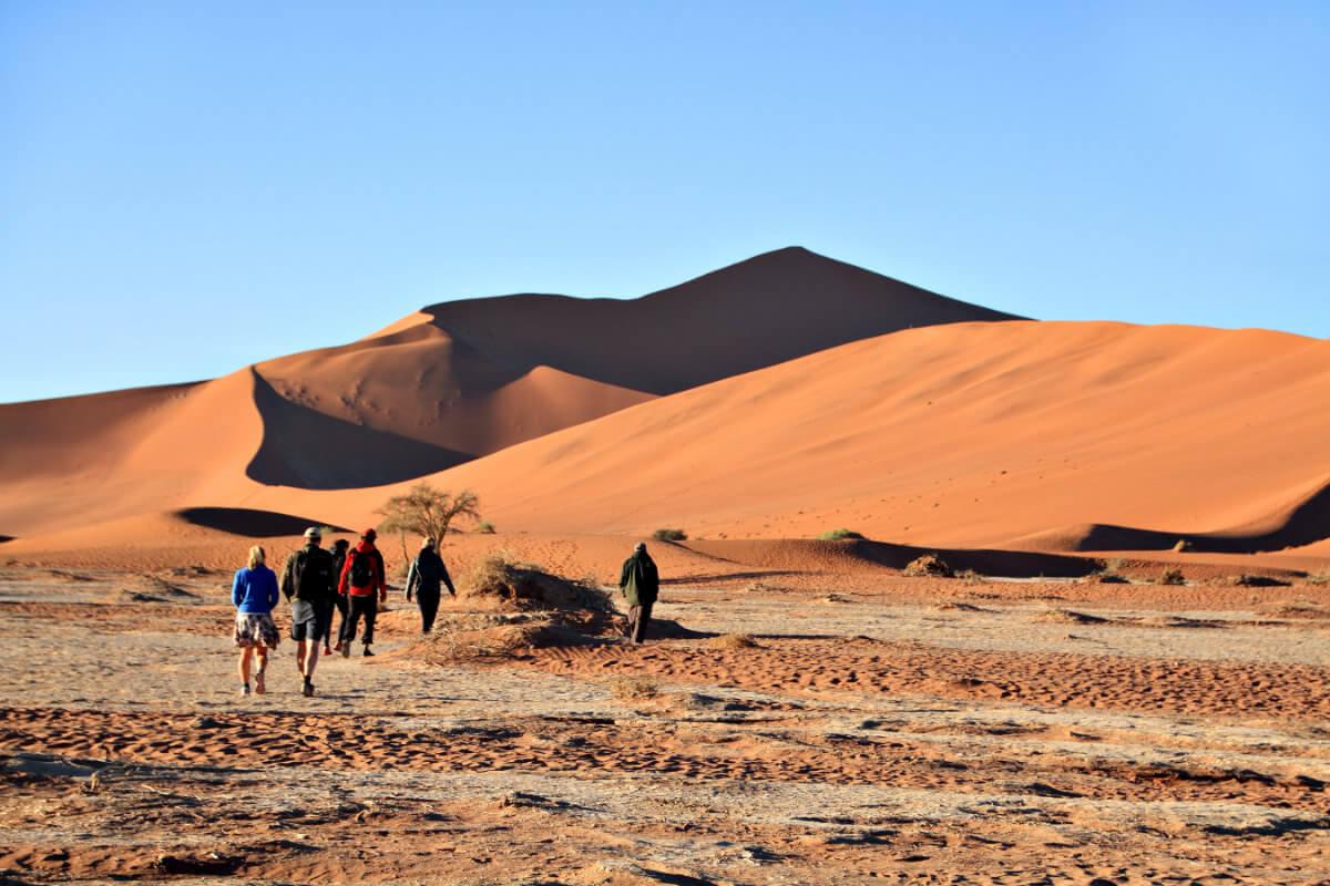 shutterstock 743527771 1 - Namibia bei Freunden