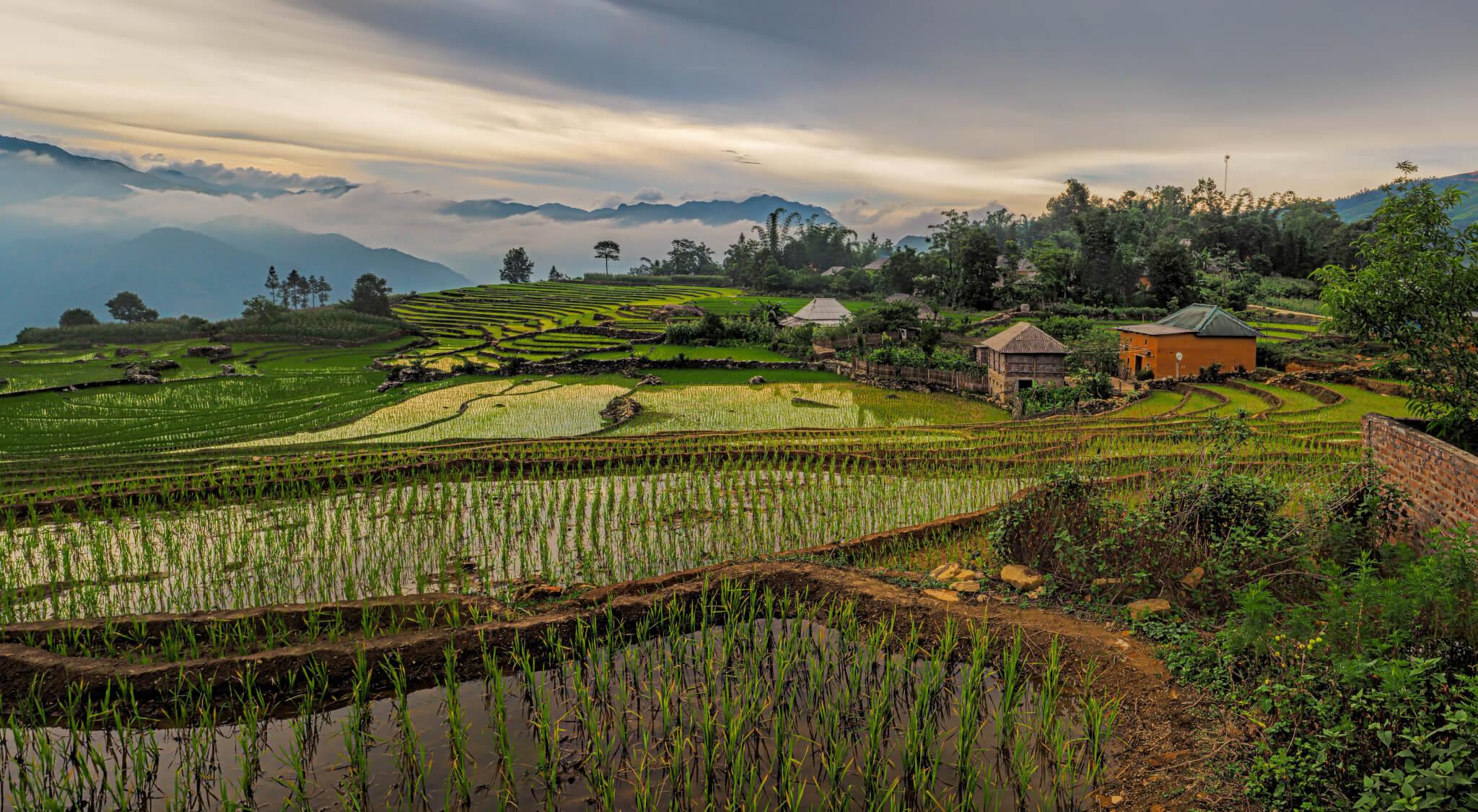 peter hammer 523046 unsplash - Impressionen Vietnams