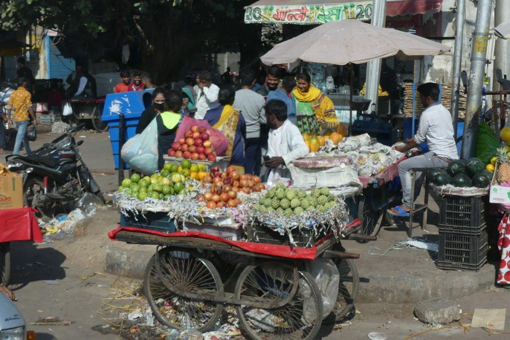 P1010405 1024x684 - Farbenfrohes Indien - Reisebericht zu unserer Rundreise