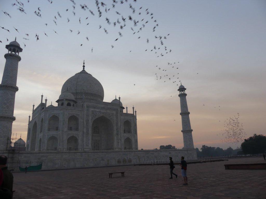P1010601 1024x768 - Farbenfrohes Indien - Reisebericht zu unserer Rundreise