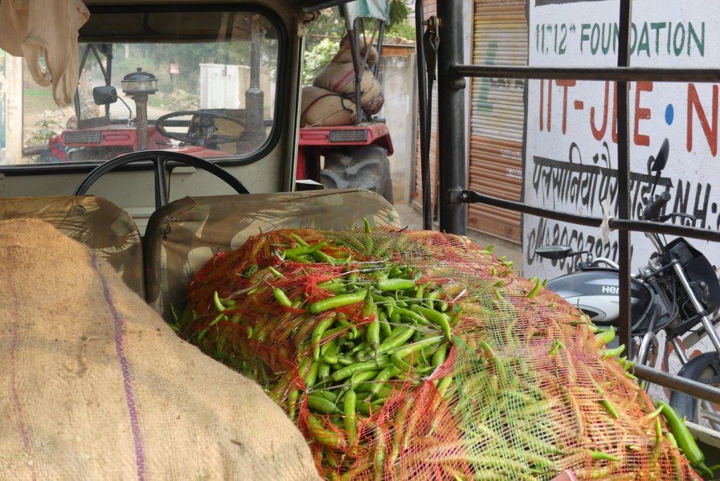 P1020053 1024x684 - Farbenfrohes Indien - Reisebericht zu unserer Rundreise