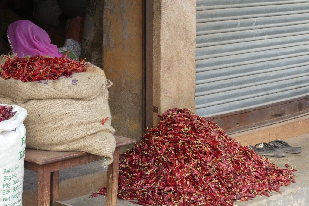 P1020320 1024x684 - Farbenfrohes Indien - Reisebericht zu unserer Rundreise