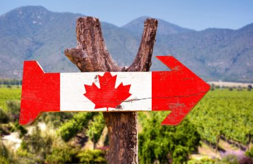Canada Flag wooden sign with winery background