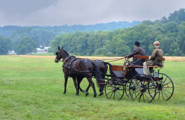 Farmers returning from the Amish organic's market in the year in