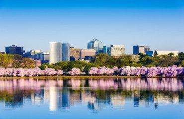 shutterstock_269959559 Washington cherry blossom