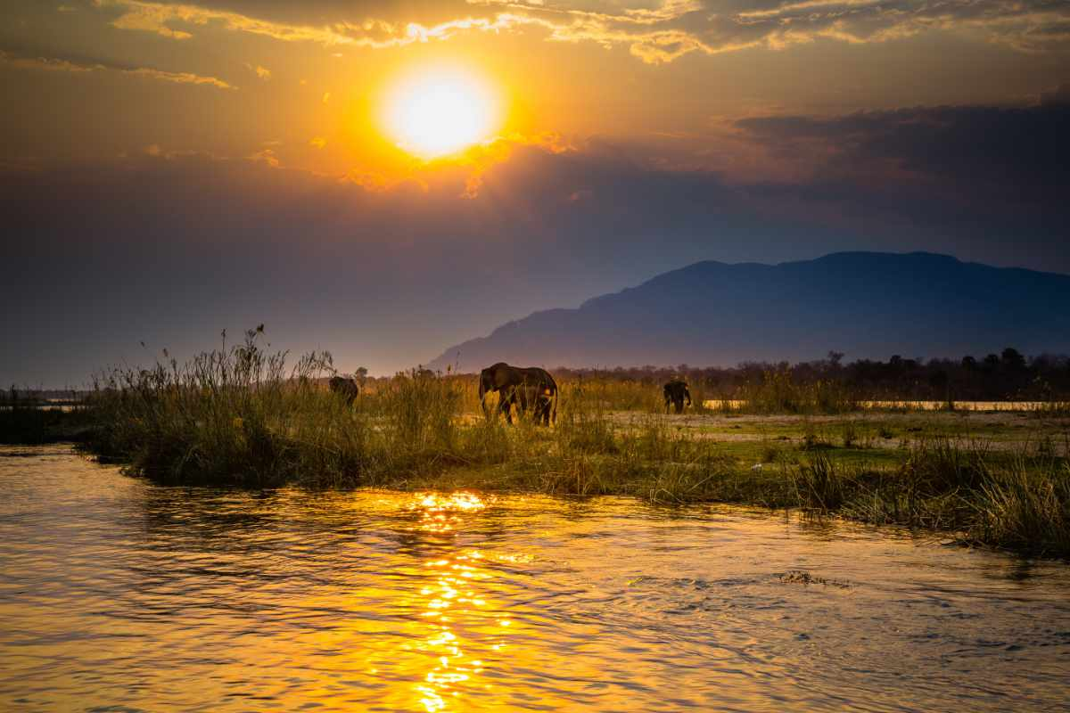 Sonnenuntergang Lower Sambesi - Faszination Sambia